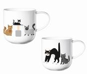 Coppa katten beker-ASA